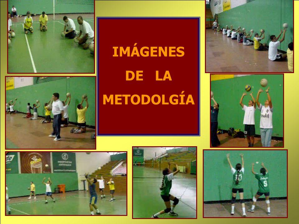 IMÁGENES DE LA METODOLGÍA