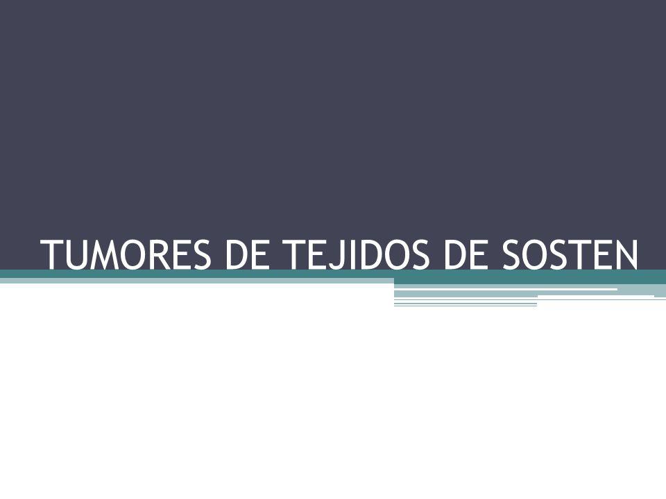 TUMORES DE TEJIDOS DE SOSTEN