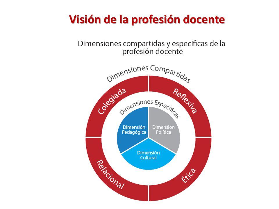 Visión de la profesión docente