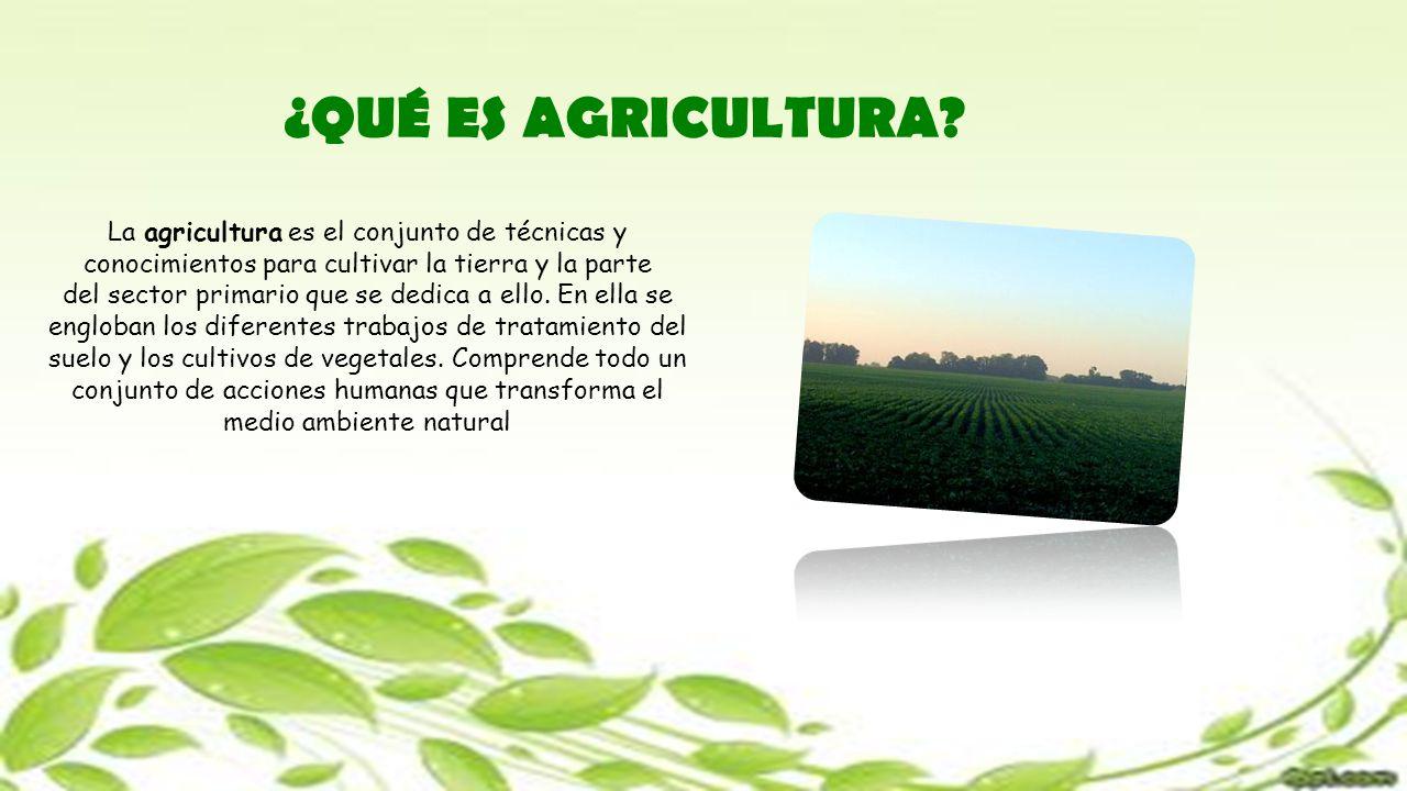 ¿QUÉ ES AGRICULTURA