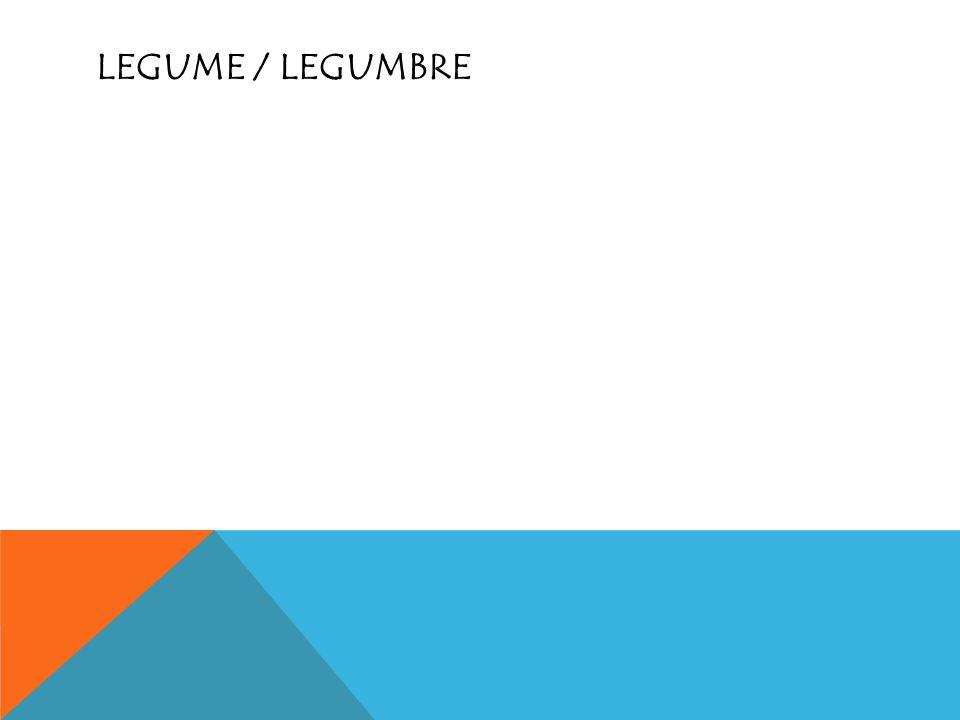Legume / Legumbre