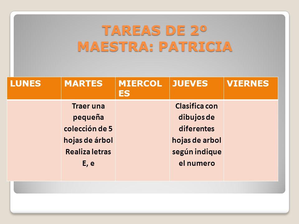TAREAS DE 2º MAESTRA: PATRICIA