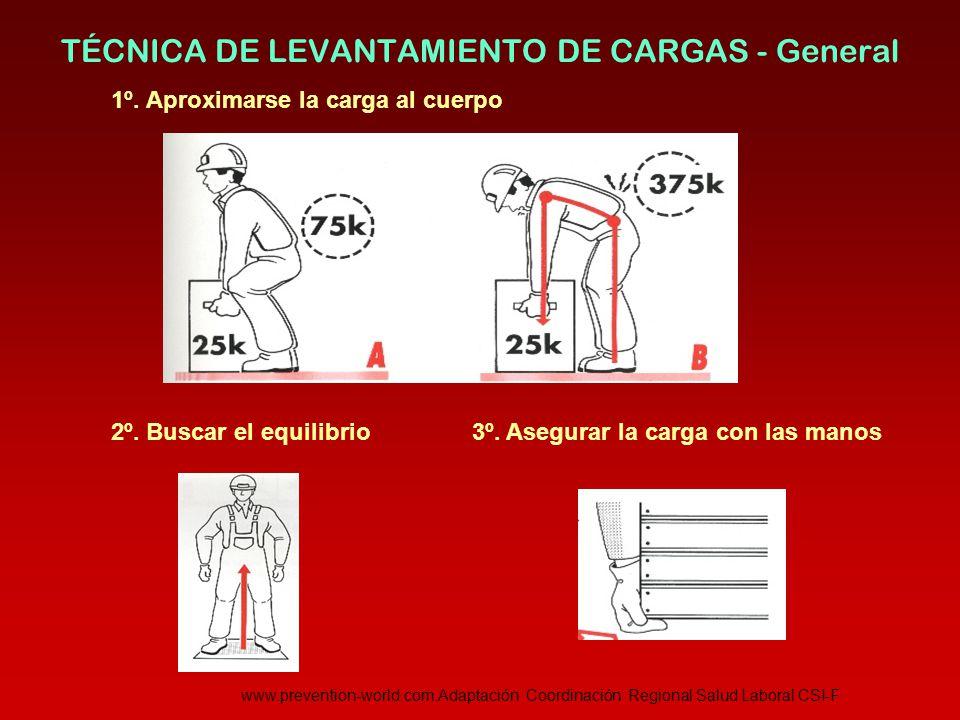 TÉCNICA DE LEVANTAMIENTO DE CARGAS - General