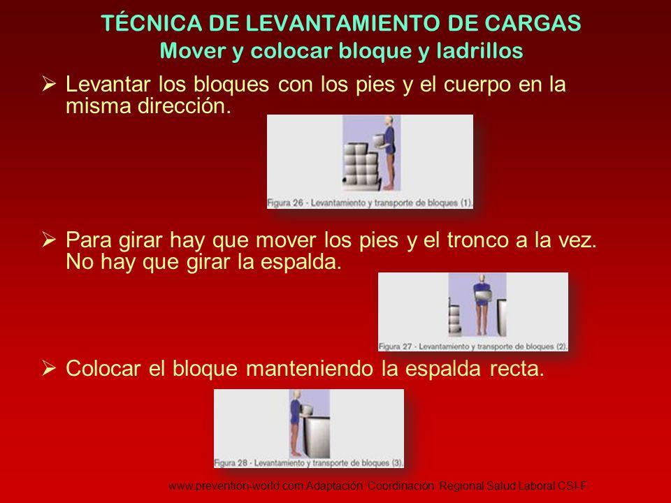 TÉCNICA DE LEVANTAMIENTO DE CARGAS Mover y colocar bloque y ladrillos