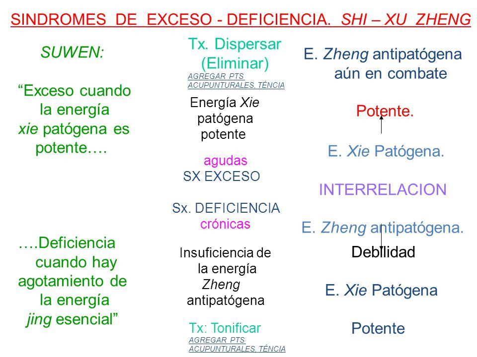 SINDROMES DE EXCESO - DEFICIENCIA. SHI – XU ZHENG