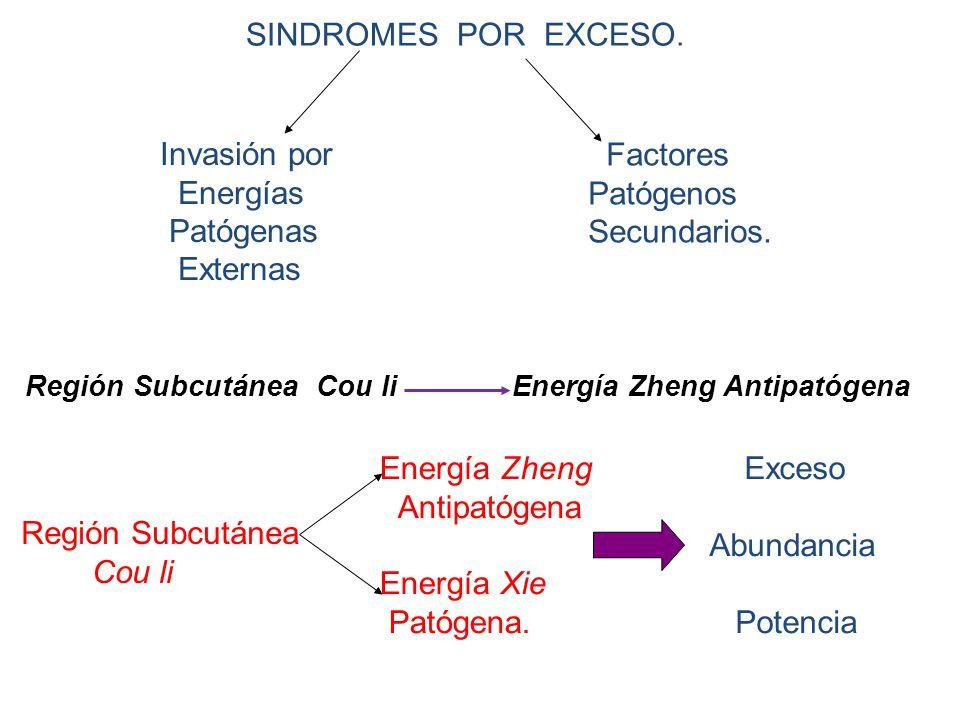 SINDROMES POR EXCESO. Invasión por Energías Patógenas Externas