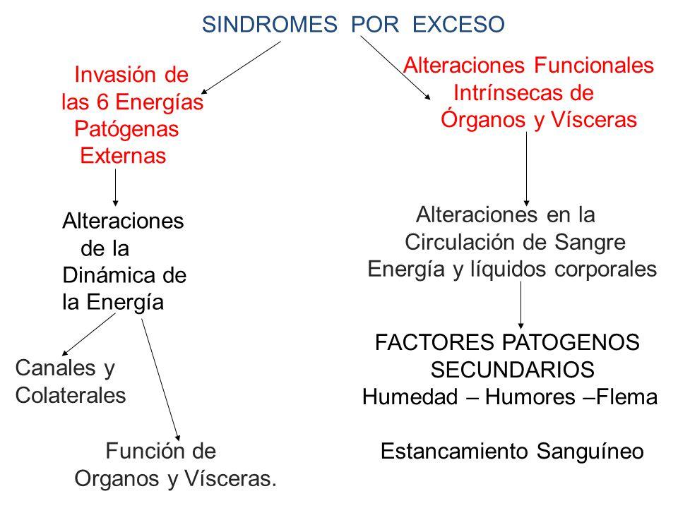 SINDROMES POR EXCESO Alteraciones Funcionales. Intrínsecas de. Órganos y Vísceras. Invasión de.