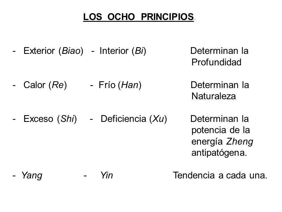 LOS OCHO PRINCIPIOS. - Exterior (Biao) - Interior (Bi) Determinan la. Profundidad.