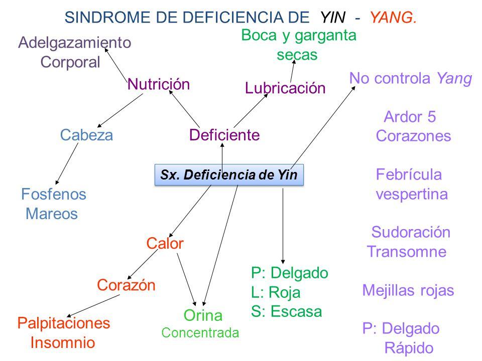 SINDROME DE DEFICIENCIA DE YIN - YANG. Boca y garganta secas