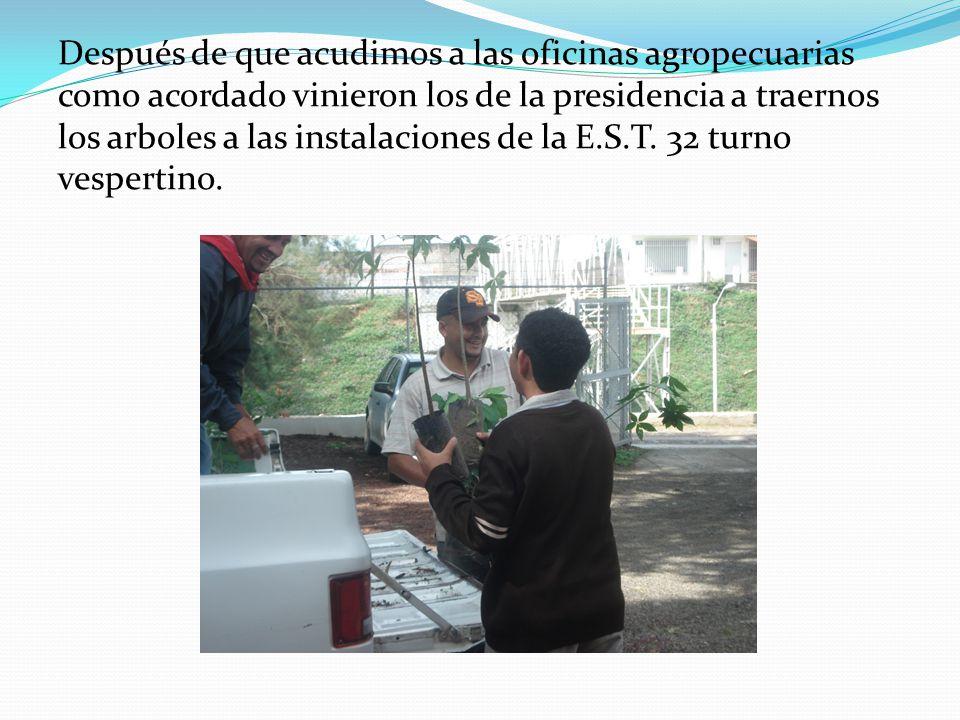 Después de que acudimos a las oficinas agropecuarias como acordado vinieron los de la presidencia a traernos los arboles a las instalaciones de la E.S.T.