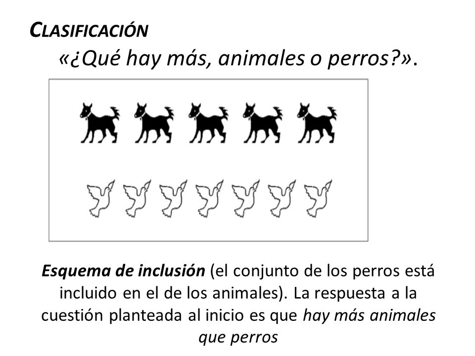 «¿Qué hay más, animales o perros ».