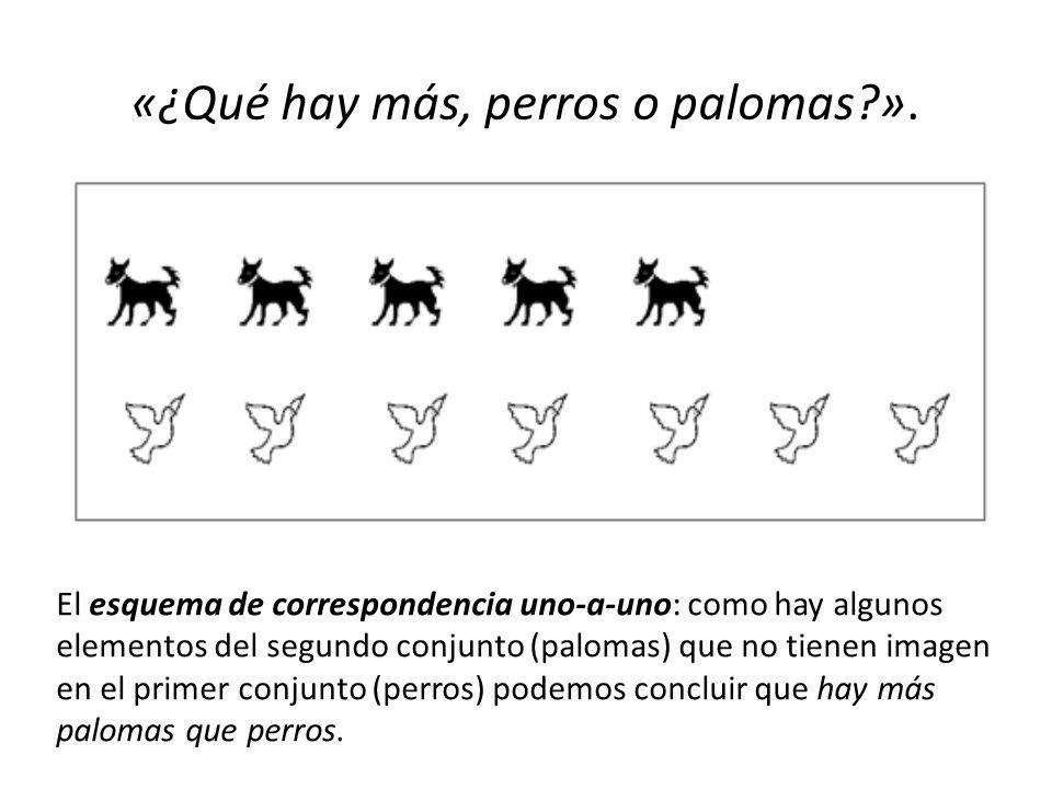 «¿Qué hay más, perros o palomas ».
