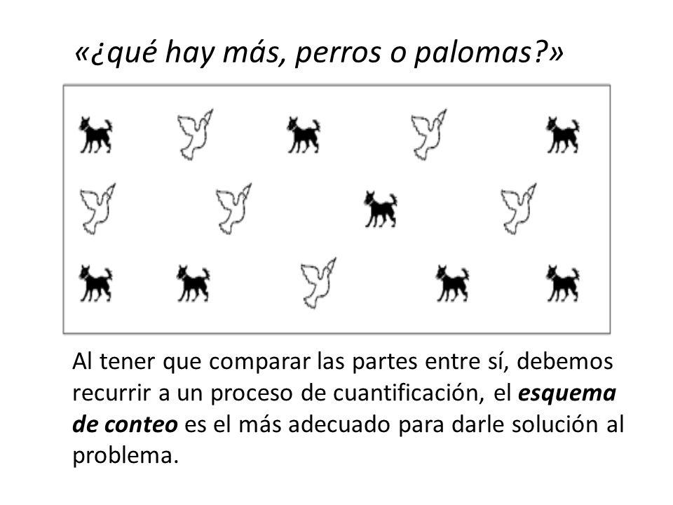 «¿qué hay más, perros o palomas »
