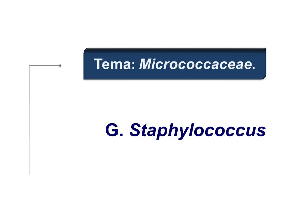 Tema: Micrococcaceae. G. Staphylococcus