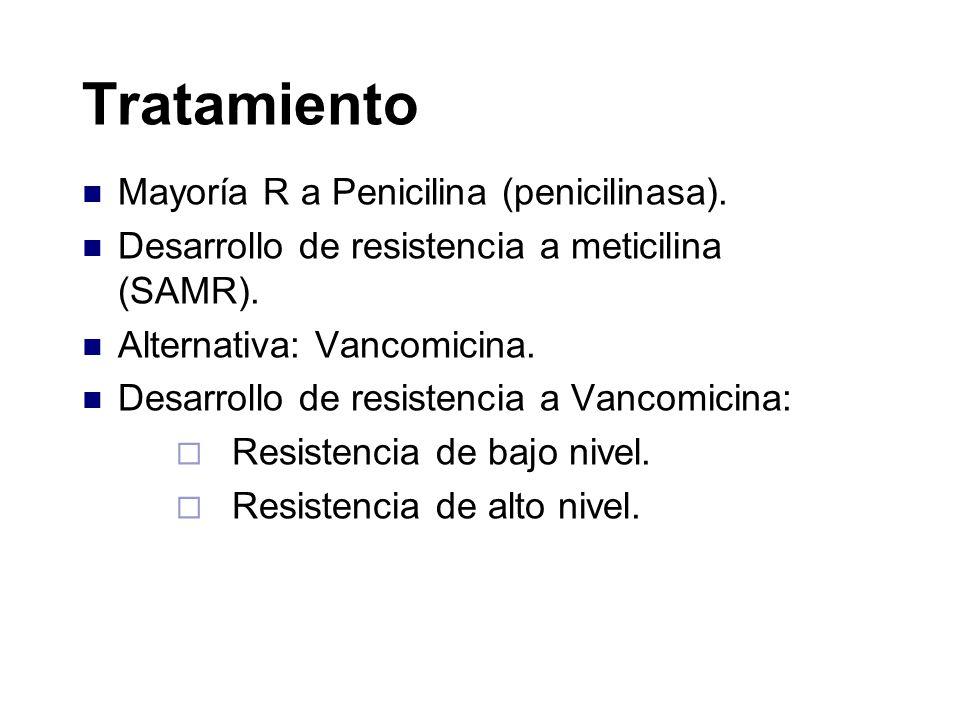 Tratamiento Mayoría R a Penicilina (penicilinasa).