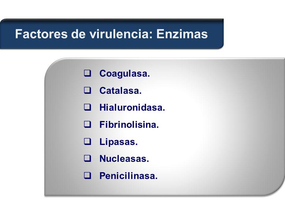 Factores de virulencia: Enzimas