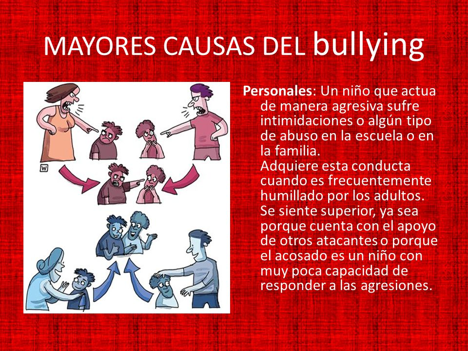 MAYORES CAUSAS DEL bullying