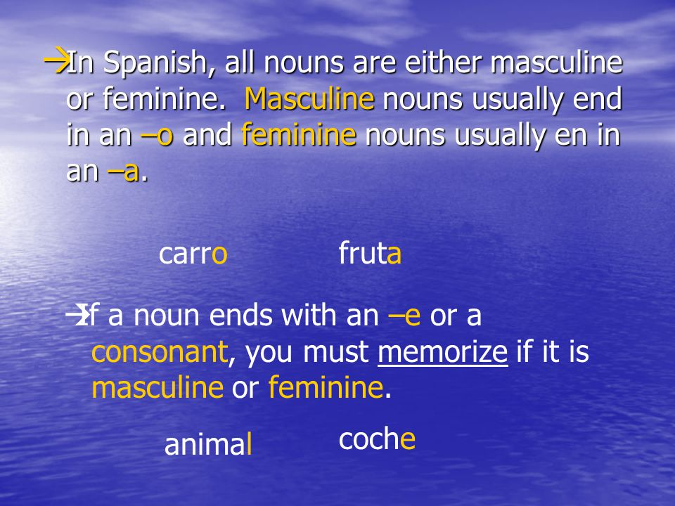 In Spanish, all nouns are either masculine or feminine