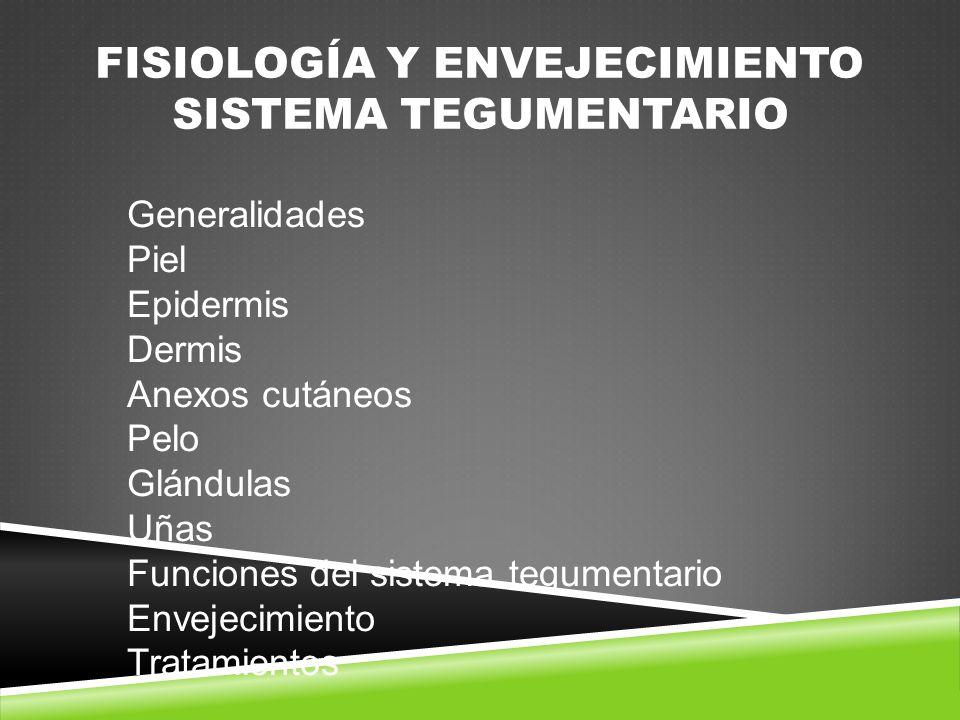 Fisiología y envejecimiento Sistema Tegumentario