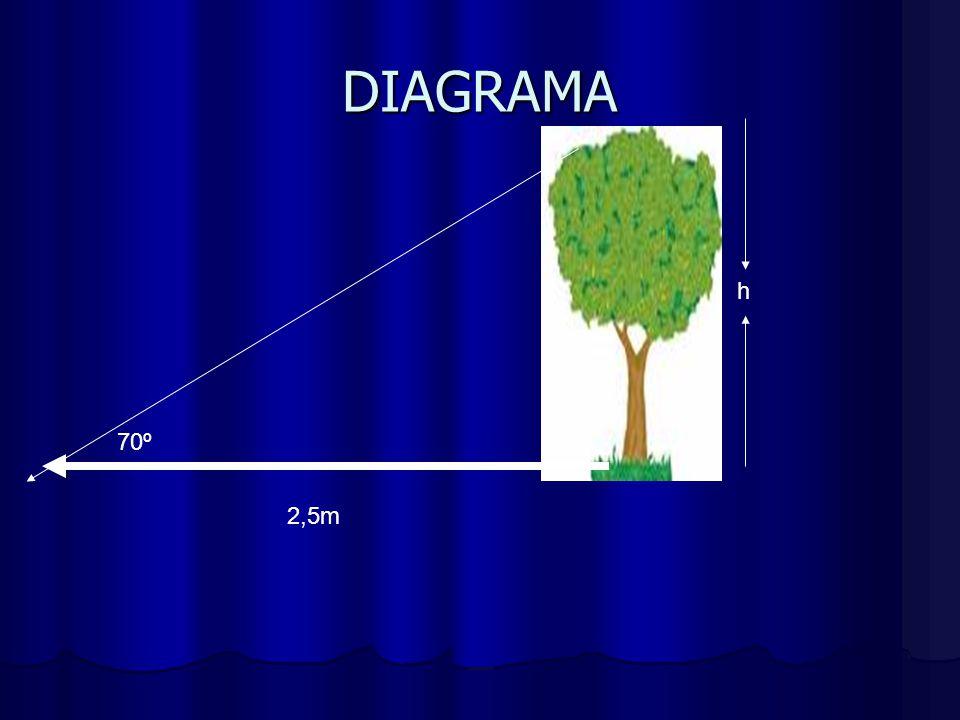 DIAGRAMA h 70º 2,5m