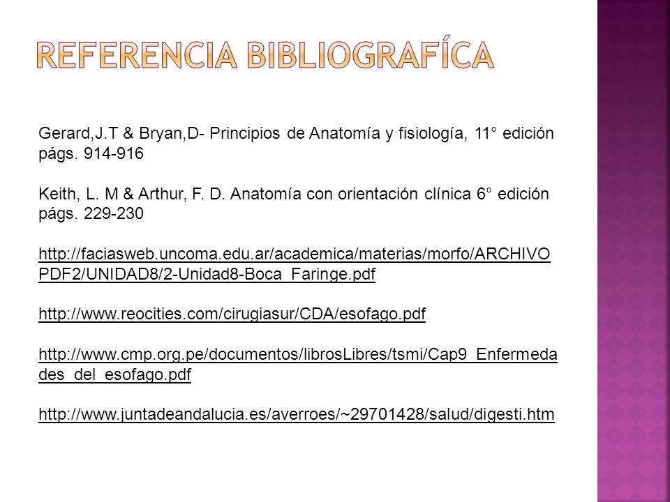 Moderno Anatomía Y Fisiología 11 Edición Componente - Imágenes de ...