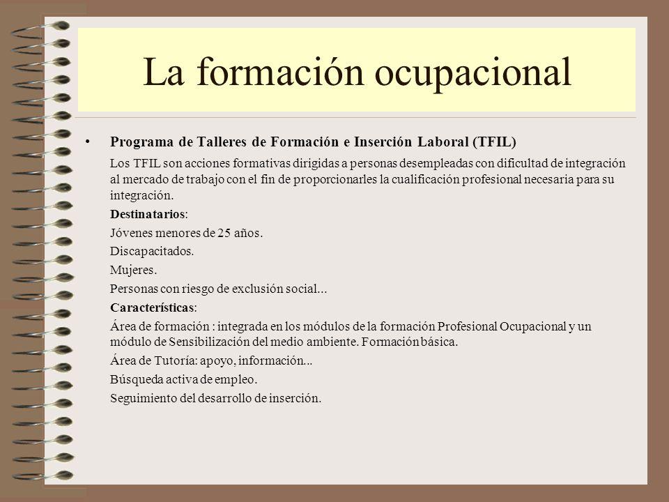 Itinerarios desde la formaci n no reglada ppt video for Oficina virtual fpe acciones formativas para personas desempleadas