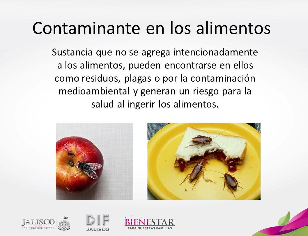Contaminante en los alimentos
