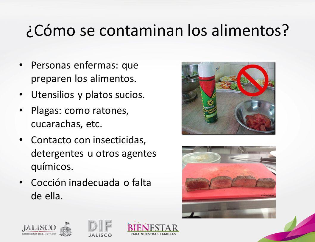 ¿Cómo se contaminan los alimentos