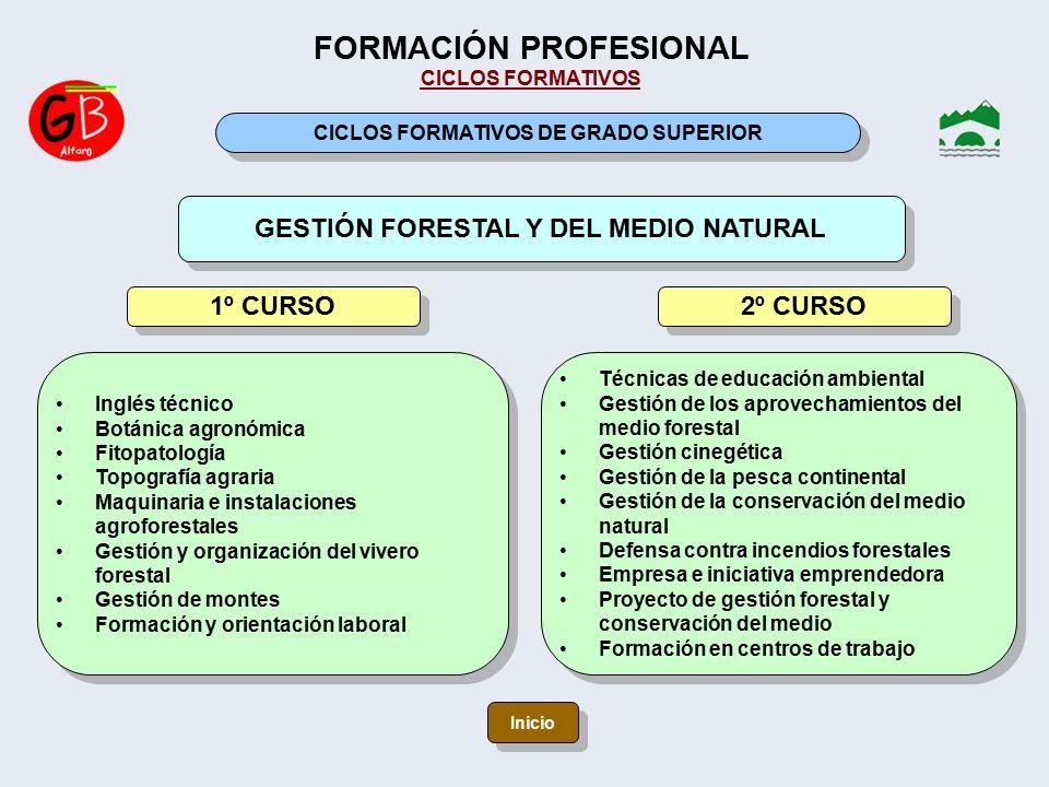E s o bachillerato formaci n profesional programas for Proyecto vivero forestal pdf