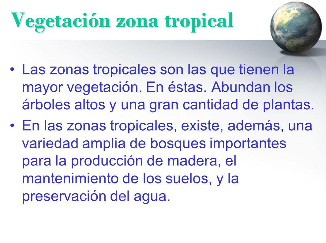 zonas clim ticas por qu hay diferentes climas ppt
