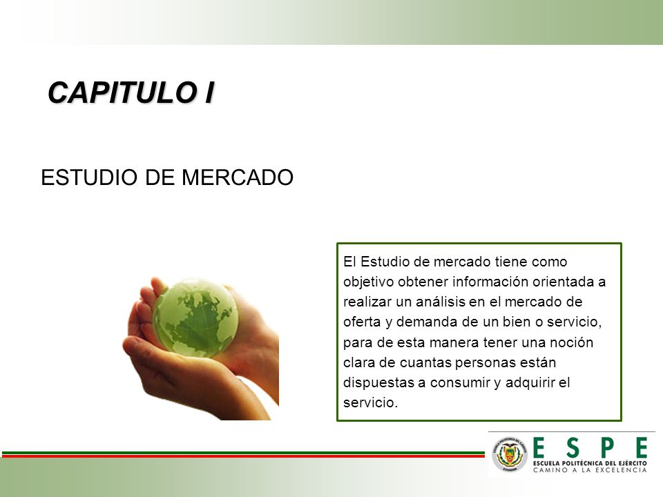 CAPITULO I ESTUDIO DE MERCADO