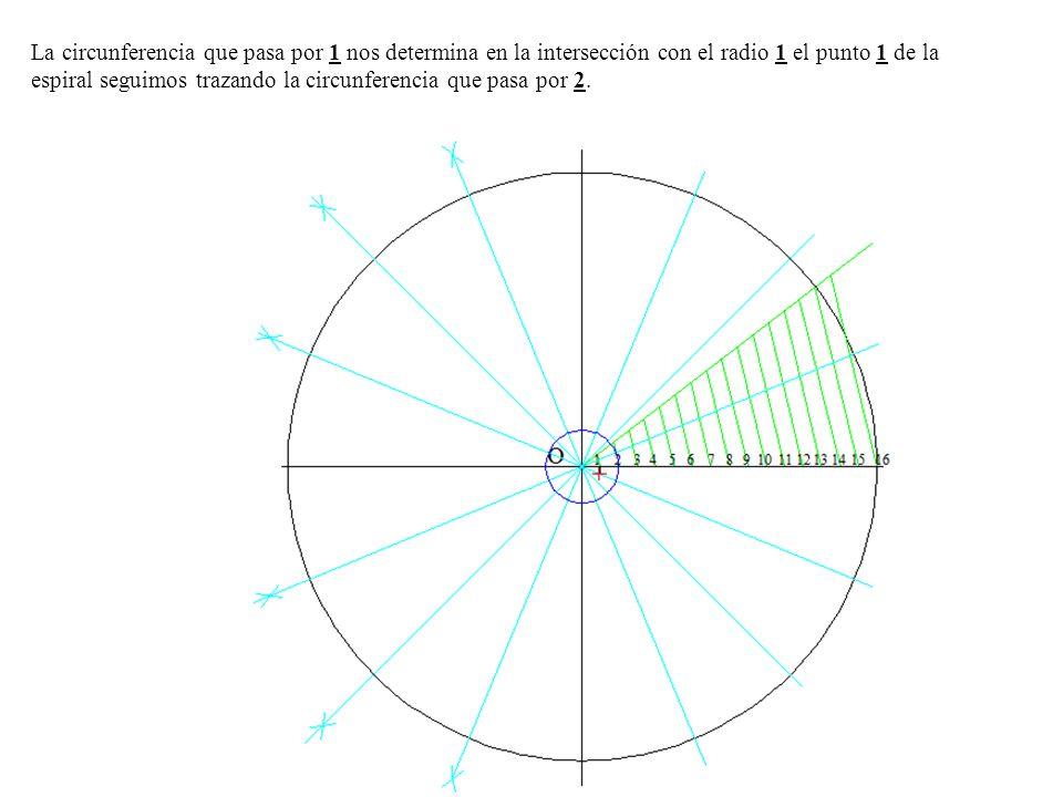 La circunferencia que pasa por 1 nos determina en la intersección con el radio 1 el punto 1 de la espiral seguimos trazando la circunferencia que pasa por 2.