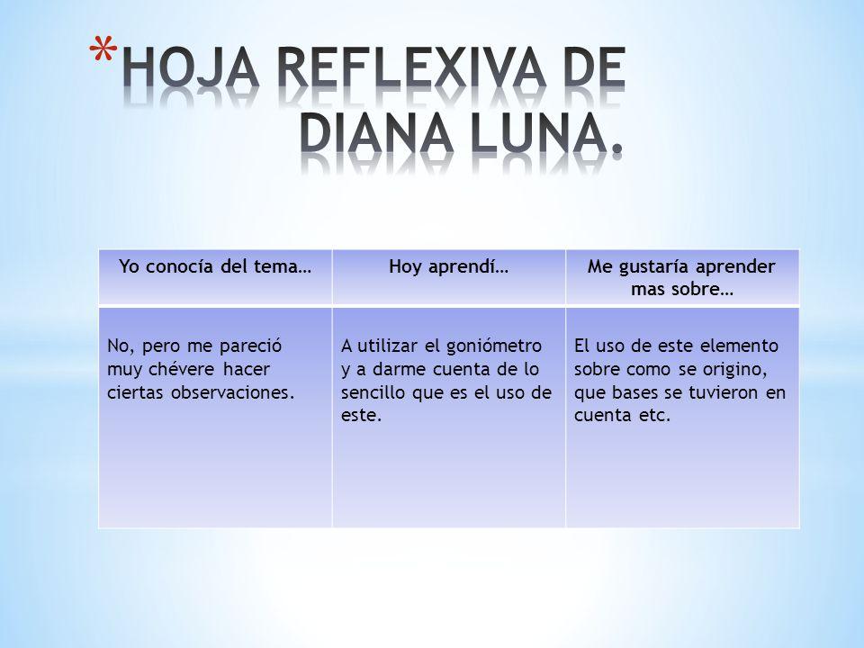 HOJA REFLEXIVA DE DIANA LUNA.
