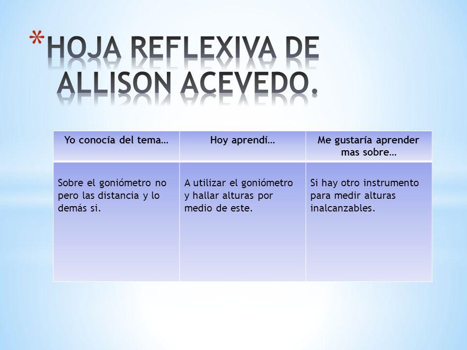 HOJA REFLEXIVA DE ALLISON ACEVEDO.