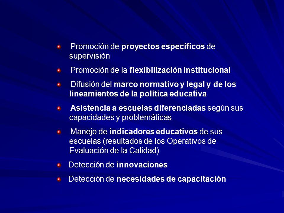 Promoción de proyectos específicos de supervisión