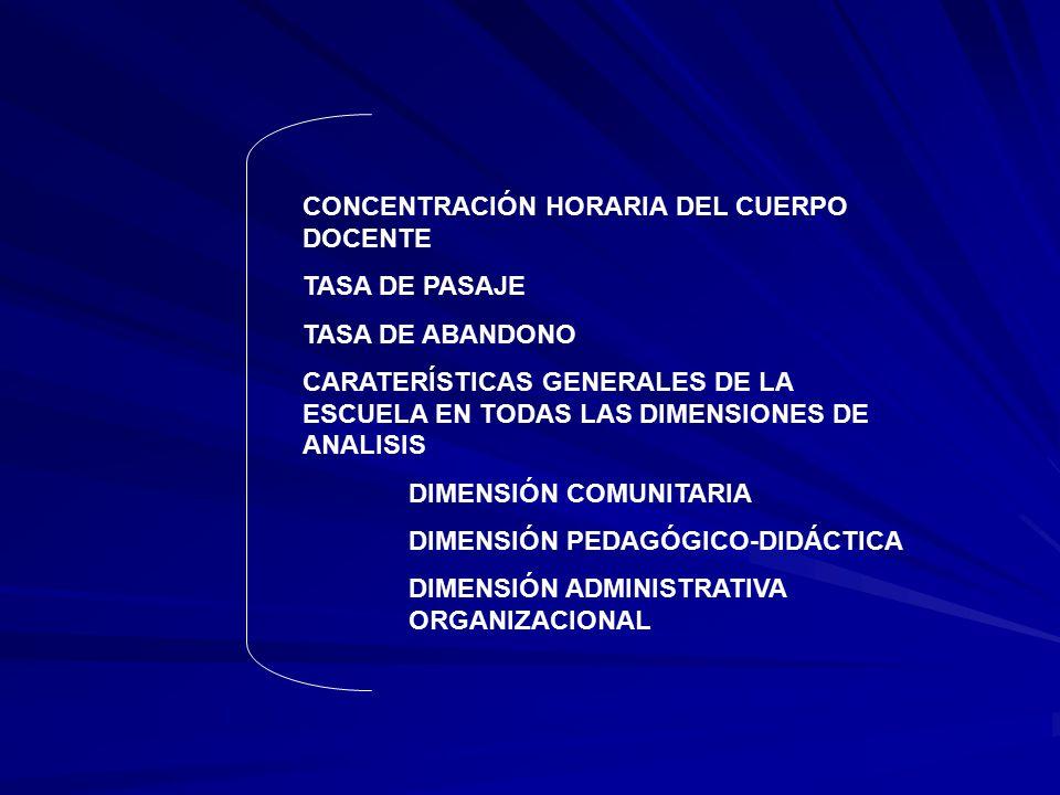 CONCENTRACIÓN HORARIA DEL CUERPO DOCENTE