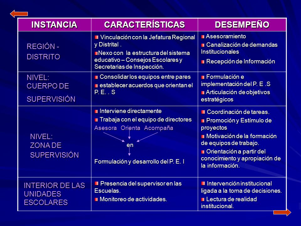 INSTANCIA CARACTERÍSTICAS DESEMPEÑO