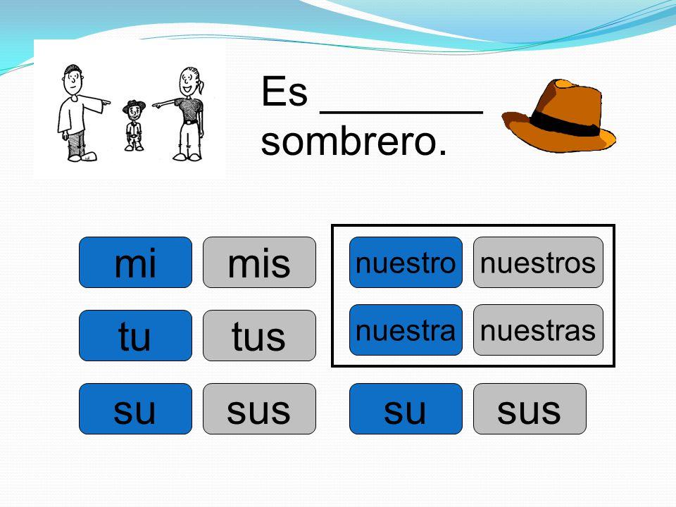Es _______ sombrero. mi mis tu tus su sus su sus nuestro nuestros
