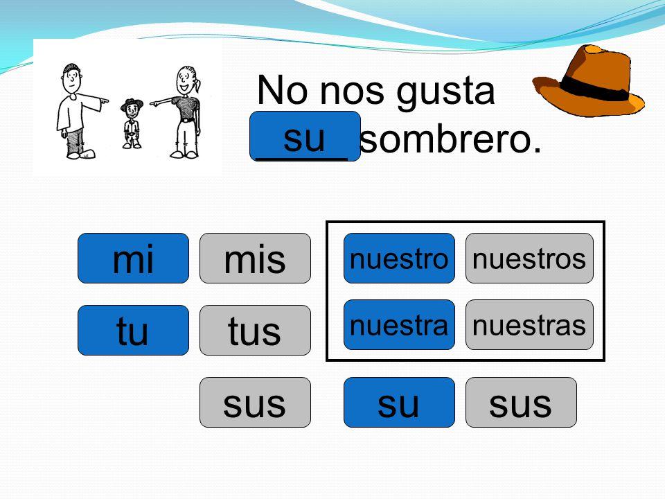 No nos gusta ____ sombrero. su