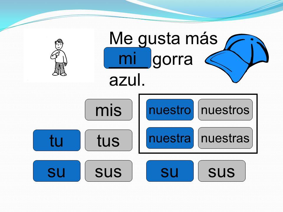 Me gusta más ____ gorra azul. mi
