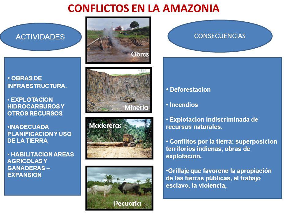 CONFLICTOS EN LA AMAZONIA