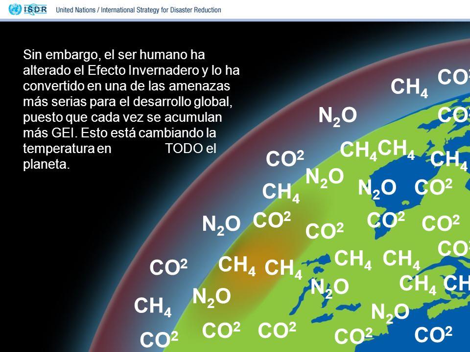 CO2 CH4 N2O CO2 CH4 CH4 CO2 CH4 N2O N2O CO2 CH4 CO2 CO2 N2O CO2 CO2