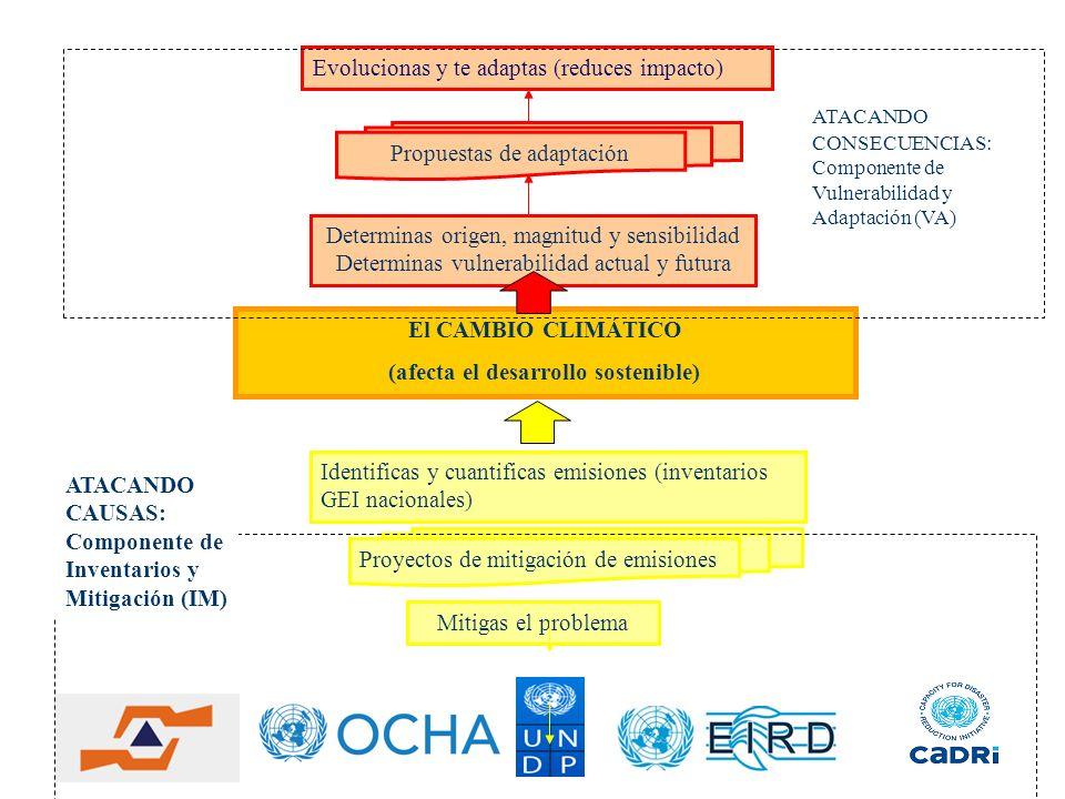 (afecta el desarrollo sostenible)