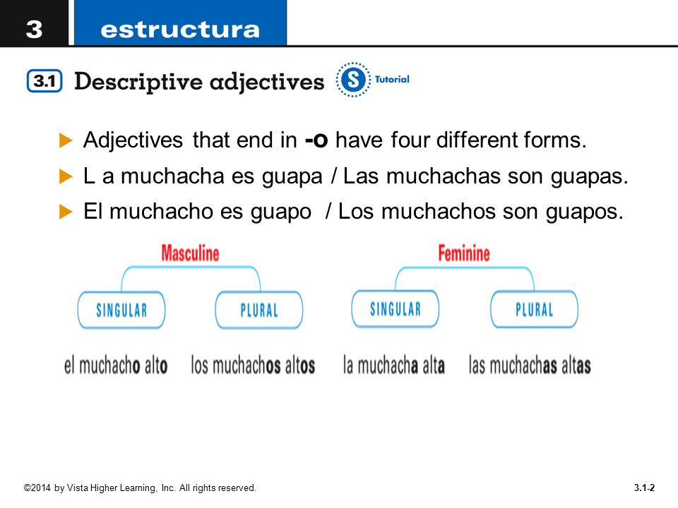 Adjectives that end in -o have four different forms.