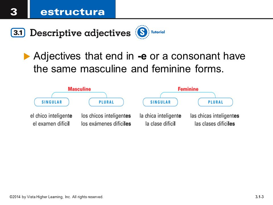 Adjectives that end in -e or a consonant have the same masculine and feminine forms.