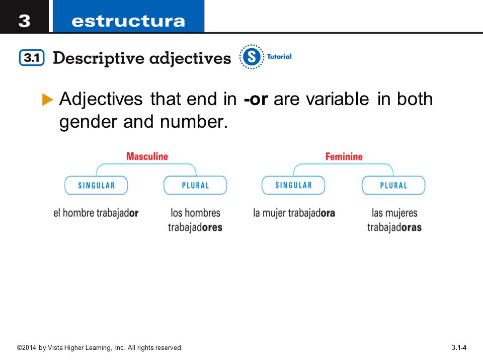 Adjectives that end in -or are variable in both gender and number.