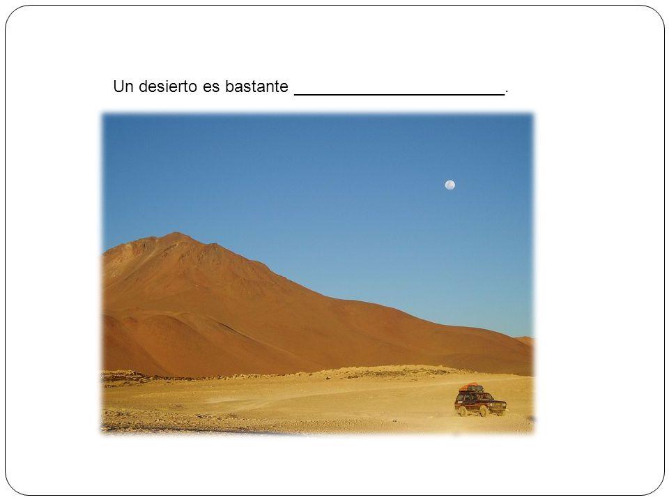 Un desierto es bastante _______________________.