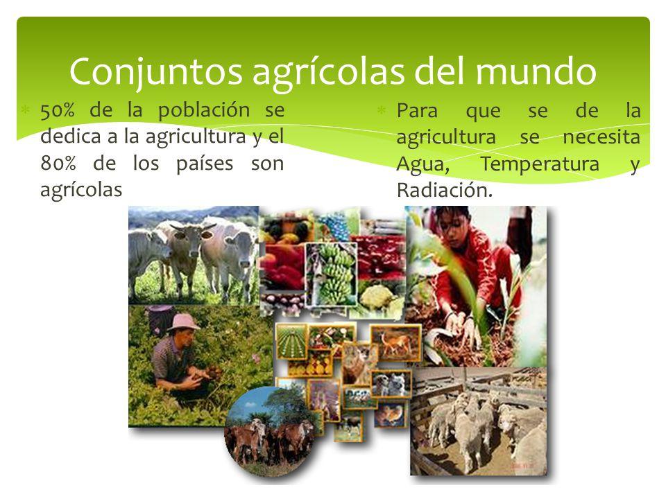 Conjuntos agrícolas del mundo
