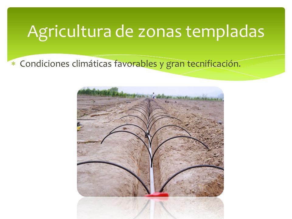 Agricultura de zonas templadas