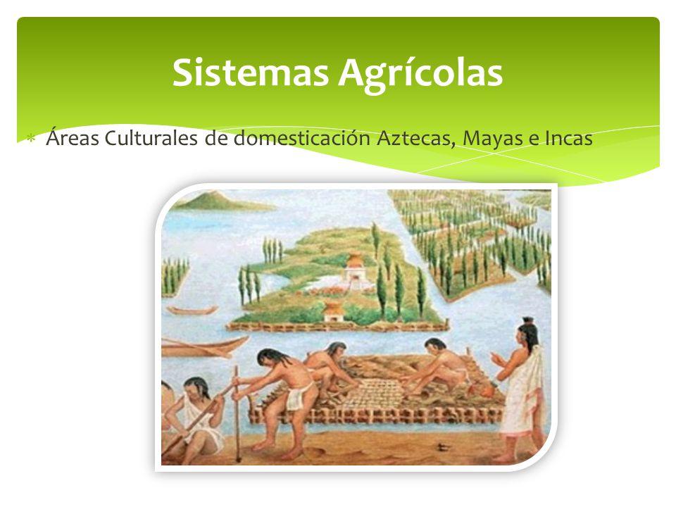 Sistemas Agrícolas Áreas Culturales de domesticación Aztecas, Mayas e Incas